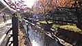 二ヶ領用水 - panoramio - shigen.jpg