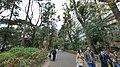 井の頭公園 - panoramio (60).jpg