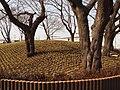 御嶽塚古墳 2009.03.21 - panoramio (1).jpg