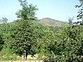 玉泉寺原址 - panoramio.jpg