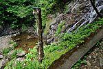 白岩の滝 - panoramio (31).jpg