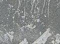 米軍機墜落の様子 in 1957-12-23.jpg