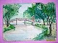 郑州人民公园小桥(1964年写生) - panoramio.jpg