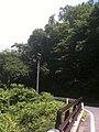 香川県高松市 - panoramio (28).jpg