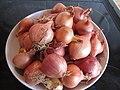 -2019-11-03 Harvest of shallots (Allium cepa) for pickling, Trimingham (1).JPG