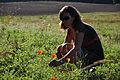 11-10-02-barnim-by-RalfR-02-01.jpg