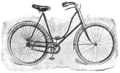 1895 Bicycles Sterling Ladies'.png