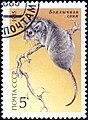 1985 CPA 5660.jpg