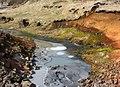 2006-05-22-113217 Iceland Hveragerði.jpg
