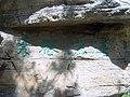 200705 紫竹院 014.jpg