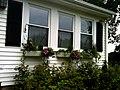 2010 windowboxes MarlboroughMA 4878255212.jpg