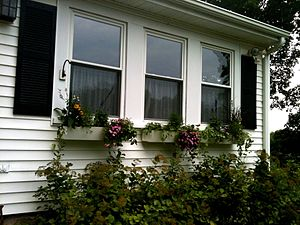 Plastic lumber - PVC window boxes will not decay