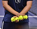 2013 US Open (Tennis) (9646891265).jpg