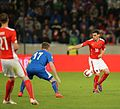 2014-05-30 Austria - Iceland football match, Christoph Leitgeb 0665.jpg