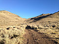 2014-10-03 07 42 31 View north along Poison Spring Road at Poison Spring, Nevada in the Diamond Mountains.JPG