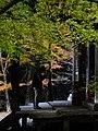 2014-11-24 Sekiganji 石龕寺 DSCF4769.jpg