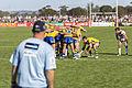 2015 City v Country match in Wagga Wagga (13).jpg