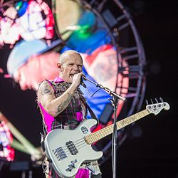 2016 RiP Red Hot Chili Peppers - Michael Flea Balzary - by 2eight - DSC0174.jpg