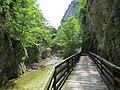 2017-07-23 (63) Steinbachtal at Dürrenstein (Ybbstaler Alpen).jpg
