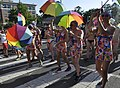 2017 Capital Pride (Washington, D.C.) - 083.jpg