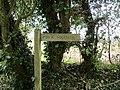 2018-04-16 Woodland walk near Felbrigg village, Cromer (4).JPG