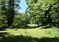 20180520185DR Golberode (Bannewitz) Auwiese am Geberbach.jpg
