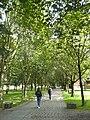 2019-08-23 Universitetet i Oslo 072.jpg