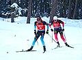 2019 Biathlon World Championships 2019-03-10 (40528272953).jpg