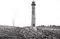 246-A Lighthouse In The Jungle.jpg