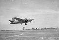 323d Bombardment Group - B-26 Marauder 41-34705.jpg