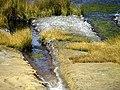 33 Irrigated land Sillustani Peru 3427 (14957029597).jpg