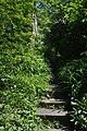 46-101-1121 Lviv SAM 9031.jpg