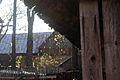 7422vik Wieś Chochołów. Foto Barbara Maliszewska.jpg