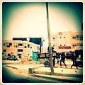 A-POIS Giuditta Nelli - Senegal 2012 - Dakar, Means of transport Horse.JPG