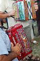 A concertina benfiquista (4958241096).jpg