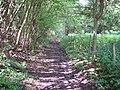 A muddy bridleway - geograph.org.uk - 173932.jpg