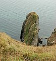 A rock outcrop on the east side of Dinas Fawr headland - geograph.org.uk - 1534386.jpg