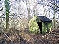 Abandoned Hut - geograph.org.uk - 682213.jpg