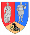 Coat of arms of Hunedoara