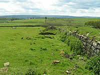 Aesica (Great Chesters) Roman Fort - geograph.org.uk - 46710.jpg