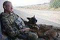 Afghanistan AEF 2012 120709-F-VN552-068.jpg