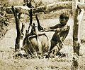 African boy.jpg