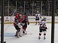 Albany Devils vs. Portland Pirates - December 28, 2013 (11622180765).jpg