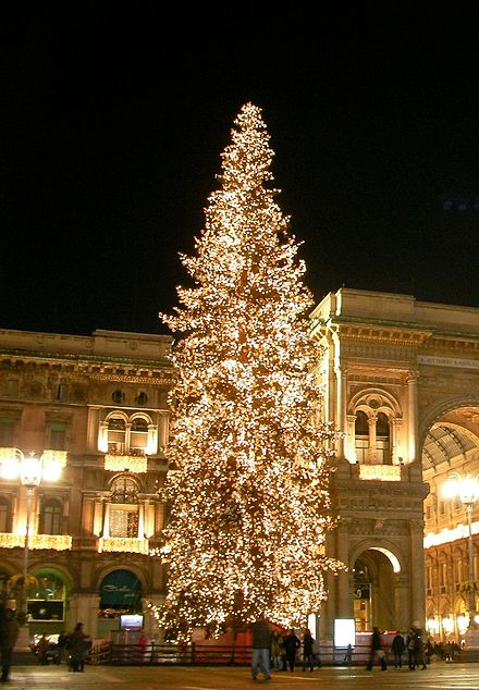 Albero di  Natale  Milano dicembre 2008