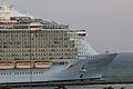 Allure of the Seas (8615660655).jpg