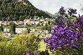 Altra vista dal Giardino d'Europa.jpg