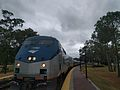 Amtrak Silver Meteor 98 at Winter Park Station (31207622520).jpg