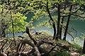 An der Urfttalsperre - panoramio (7).jpg