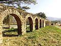 Antiguo Acueducto Hacienda Tiquire Flores Siglo XVII, El Consejo, Municipio Jose Rafael Revenga (file split).JPG