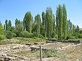 Aphrodisias Geyre - panoramio.jpg